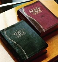 Bíblia de Estudo Palavras-Chave