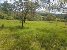 """Sitio """"ouro verde"""" 7 hectares"""