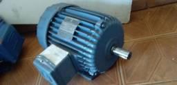 Motor búfalo 4 cv