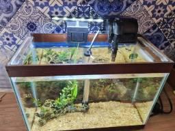Aquario com luminária led, aquecedor e filtro.