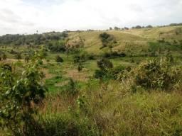 Sítio com 5 hectares, bem próximo à Praia Bela, 300m da pista (PB 008), energia perto