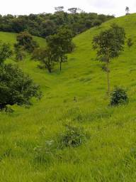 Fazenda de 44 alqueires em Itapuranga