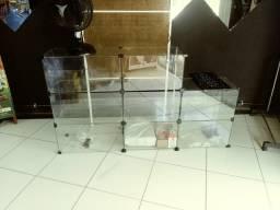 Balcão expositor vitrine de vidro