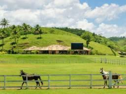 Compre sua fazenda, invista com gado, cavalo, carneiro.