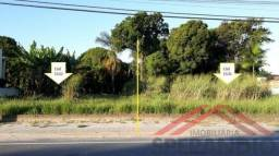 Terreno na Av. Brasil, limpo e aterrado, c/384m² (16x24m), Baln. Palmeiras