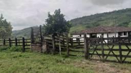 Alagoinhas / Fazenda / Edna Dantas!!!