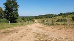 Paraiso na Beira do rio Manso, Fazenda 405 Ha