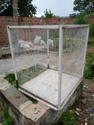 Viveiro, gaiola para petz ou aves.