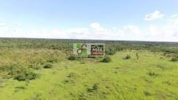 """Fazenda Plana """"Barata"""" em Santana do Araguaia-PA"""