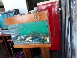 Aquario para peixe com suporte