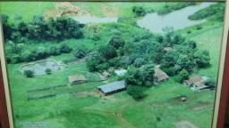 Trindade Chácara 35 km de Goiânia 5.54 alqueires
