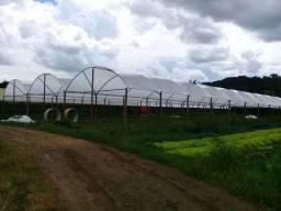 Estufa agrícola de 420m² (14m x 30m) - Apenas a parte aérea