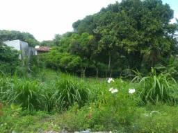 Ótima granja em Mangabeira