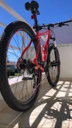 Bike Audax 100