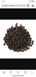 Pimenta do reino preta em grãos vendo 13 reais o kg