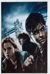 Título do anúncio: Placa - Quadro decorativo em pvc 20 x 30 modelos Harry Potter