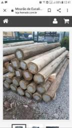 Mourão de eucalipto tratado $2.200,00 as 27 peças