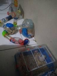 Casa/ Mansão pra hamster e hamster
