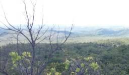 Fazenda 559 hec