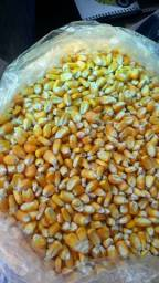 Milho grãos