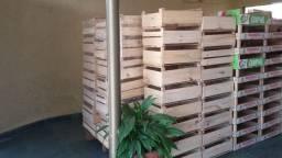 Caixotes de madeira para decoracao