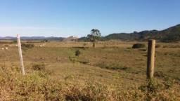 Fazenda para venda entre Tijucas e Porto Belo