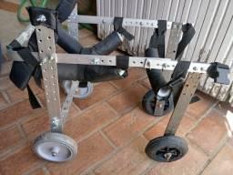 Cadeiras de rodas para cães deficientes nas patas traseiras.