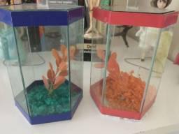 Vendo 2 aquários de vidro para beta