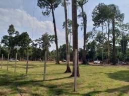 Chácaras Rio Negros km 07 da AM 070, lote de 75 x 20 metros (1.584,47 m2)