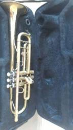 Trompete goldman