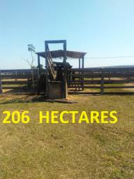 Linda Fazenda com 206 Hectares Campo Grande