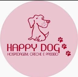 HappyDog hospedagem , creche e passeios para pets