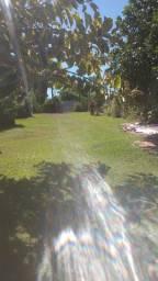 Chácara zona norte de londrina