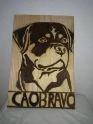 Cão Rottweiler na madeira.