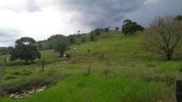 Fazenda 2.541 Hectares Terra de Cultura - Grande Oportunidade - MT