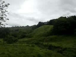Fazenda ( 26 hectares )