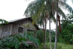Fazenda de 1.330 hectares Vila Equador em Rorainópolis/RR, ler descrição do anuncio