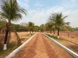 Vendo Sítio com 10 hectares à 23 Km de Cuiabá sentido Santo Antonio,