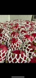 Pitaya in natura  polpa roxa