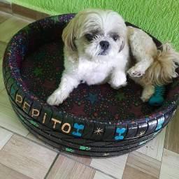 Vendo lindas caminhas para Pet feitas de pneu super confortáveis