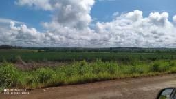 Fazendas. Arrendamentos  600 há /1000/. E 400 ha