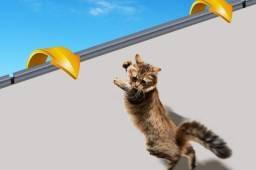 RollerCat - sistema anti fuga para gatos - 6 metros - preto