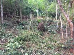 Terreno no Bairro Campeche em meio a natureza aos pés do Morro do Lampião