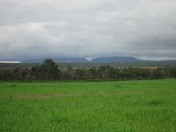 Fazenda de dupla aptidão com 9 mil hectares, em Balsas- Ma