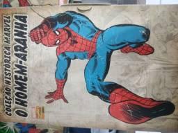 Hq Coleção histórica Marvel-homem aranha todas edições completo