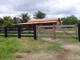 Sitio/ chácara em sua localidade