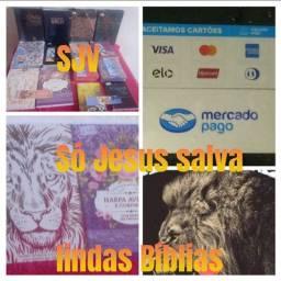 Lindas Bíblias adulto e infantil A partir de r$ 32