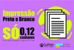 Impressão + Barata de Curitiba