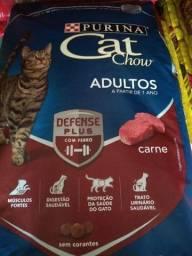 Ração de gato cat Chow entrega gratuita