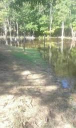 Vendo terreno rural medindo 400x2.000m na distrito de maracá